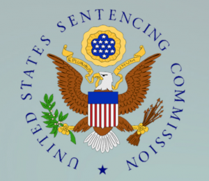 The requirements of the §5K1.1 are set out in the United States Sentencing Guidelines.